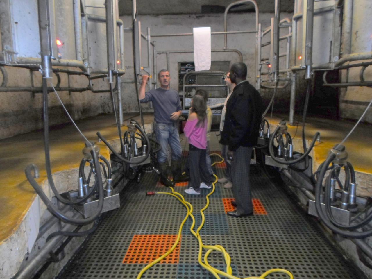 Visite de la ferme laitière Navarro à Polminhac